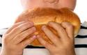 Alimentazione_grassa_Home