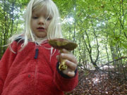 Funghi-bambini