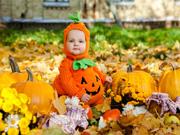 Halloween-zucche-intagliate