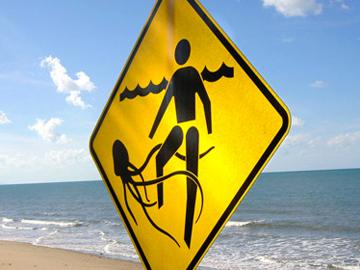Pericolo-meduse