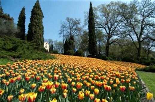 Parco giardino sigurt - Parco giardino sigurta valeggio sul mincio vr ...