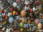 Pasqua in Olanda